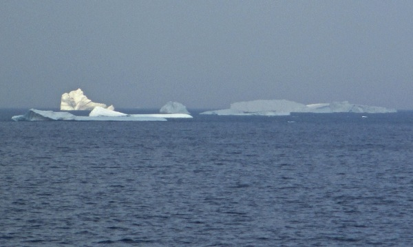 Icebergs oliver s cove head