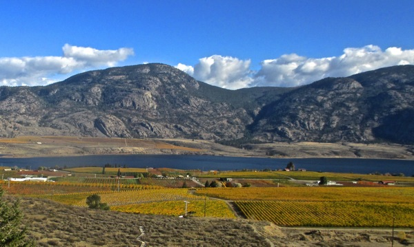 Osoyoos lake nov 2014 1