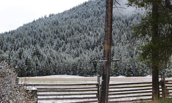 April snow 4