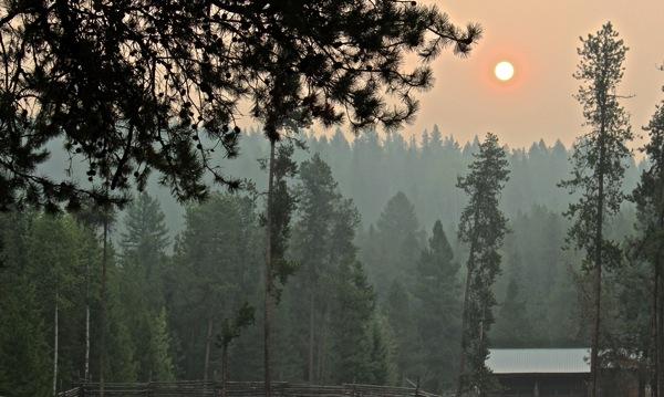 Morning sun in smoke
