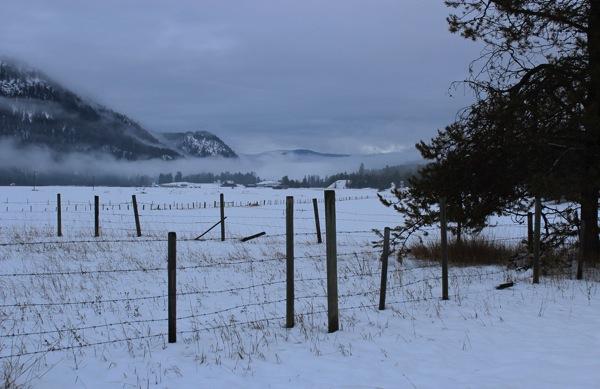Farm under cloud