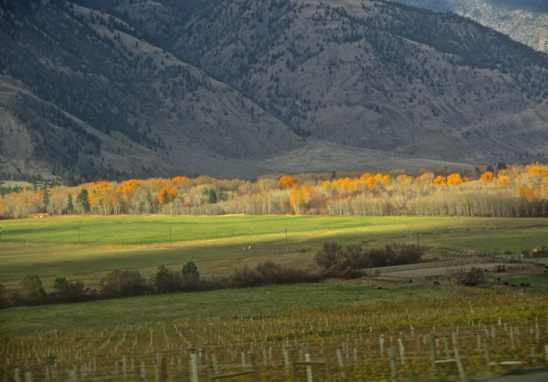 Along the similkameen nov 2014
