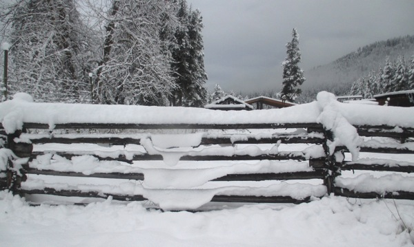 Lips of snow on fence