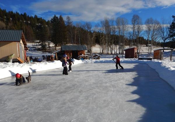Skating rink copy