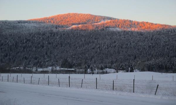 Morning sun on the hilltop